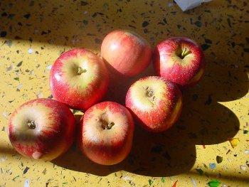 Mele e pomodori per la salute dei polmoni