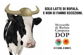 Mozzarella dop del consorzio per Bill de Blasio, fuori dal consorzio per Papa Francesco
