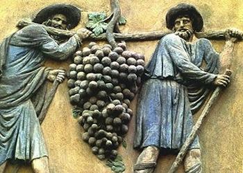 E' il Cecubo il primo vino naturale di Villa Matilde