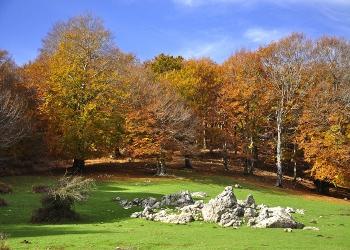 Le programmazioni dei Parchi regionali, Matese e Taburno verso la stagione turistica