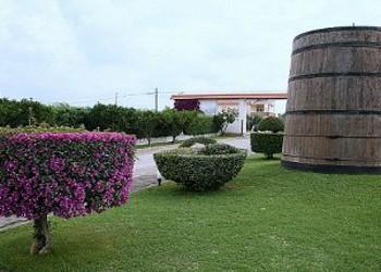 Deìra, il nuovo passito di Villa Matilde, debutta tra le  Primizie 2013 di Casa Vissani