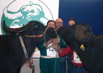 Agrosud 2013  - Fiera dell'Agricoltura Mostra D'Oltremare Napoli