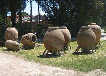 Un focus sulle proprietà dell' Olio del Cilento al Museo Paestum