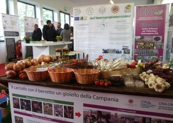 Programmazione 2014-2020 Le proposte del movimento cooperativo per l'agroalimentare