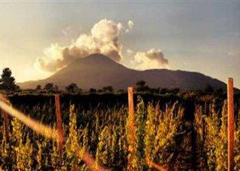 Vesuvian Happy Hours, percorso naturalistico sul Vesuvio al tramonto del primo maggio