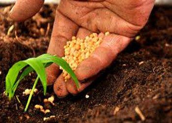 Le proposte sull'agricoltura di Agrinsieme Campania