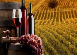 Guida delle aziende vitivinicole della Campania, presentazione in Regione