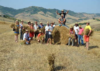 Ricambio generazionale in agricoltura, i passi avanti della Campania