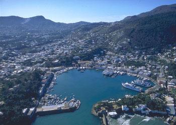 Ischia DoC, cinquantesimo anniversario per il vino dell'isola verde