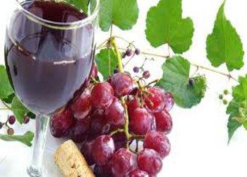 Serata Slow Food al Meeting del Vino Campano di Castellammare di Stabia