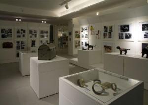 Dopo l'orto  il Centro Campania si apre ai laboratori su teatro e rapporto con animali
