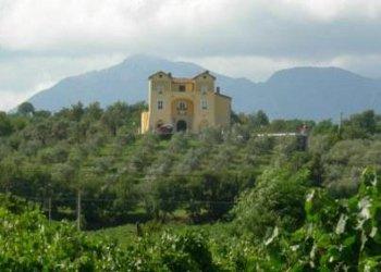 In Vino Veritas: 6 Eventi, 6 Borghi del Sannio in un'unica cornice