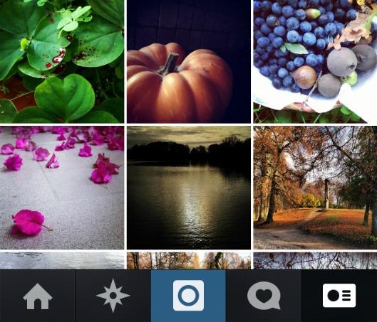 social_gardening