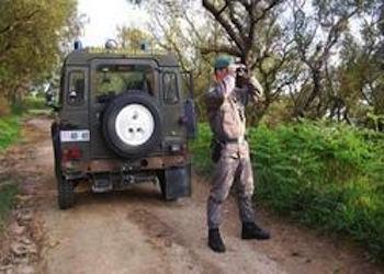 Agrocepi chiede il ripristino del Corpo Forestale dello Stato