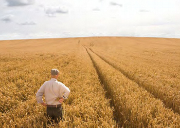 Sull' IMU agricola e ambiente la mobilitazione di Agrinsieme Campania