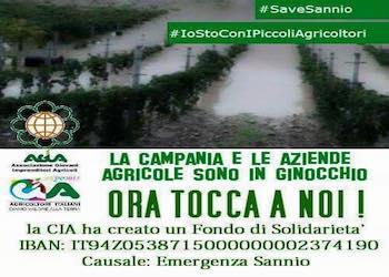 Il fango devasta le vigne del sannio, la solidarietà del mondo agricolo