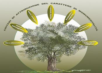 Alberi monumentali, la Campania ha il suo Atlante