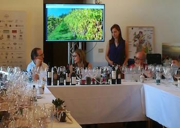 Il 2021 del vino, intervista a Piero Gabriele di AIS Campania