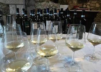 I Vini bianchi campani per la Vigilia 2019: Alberata, Santa Vara, Fauno Bianco