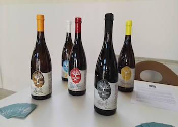 Slow Wine si presenta anche con la Guida alle Birre d'Italia a Napoli