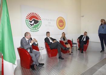 Covid, l'impegno urgente di Regione e Consorzio per la filiera bufalina