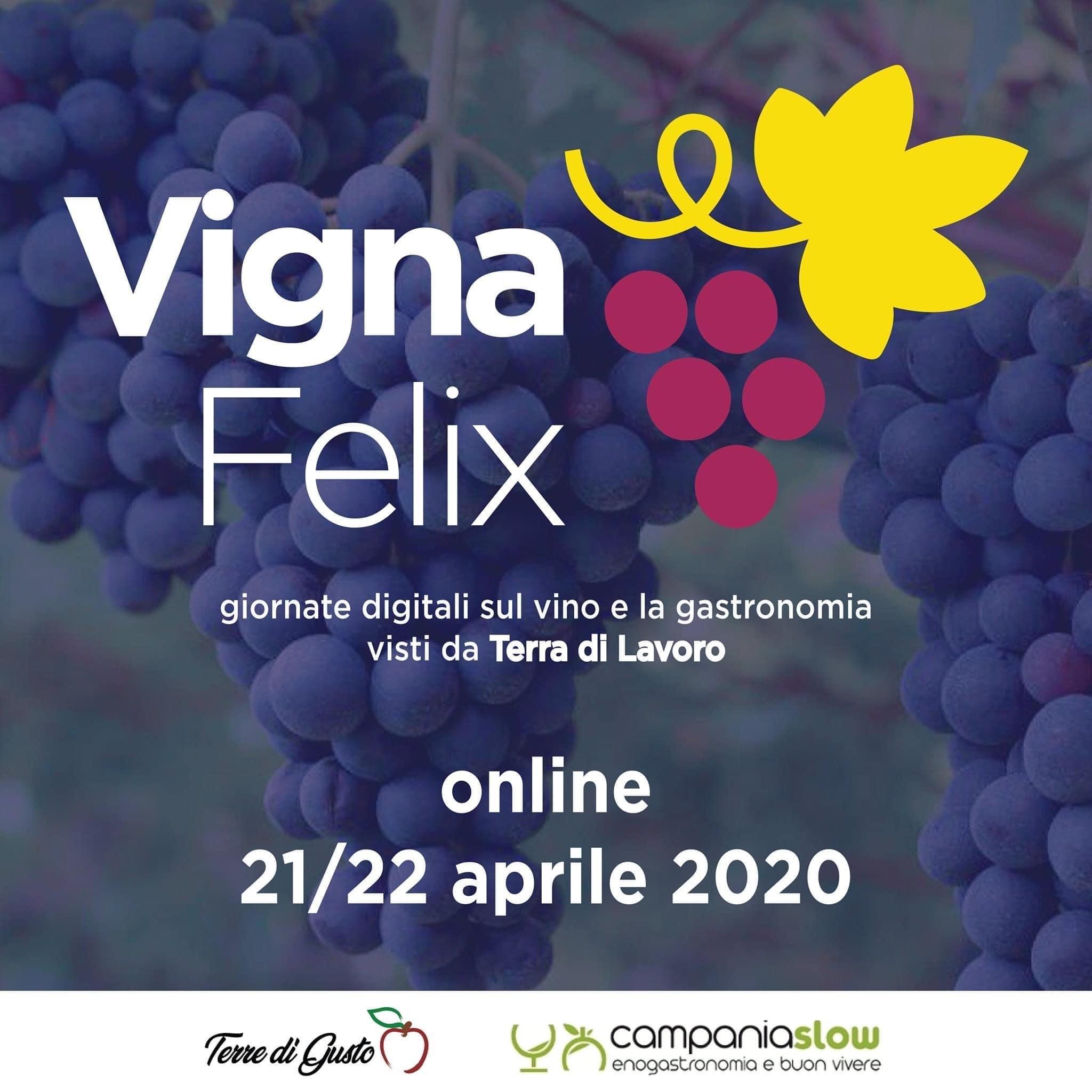 Domani Vignafelix, discutere di Vino, ristorazione, turismo enogastronomico al tempo di Covid
