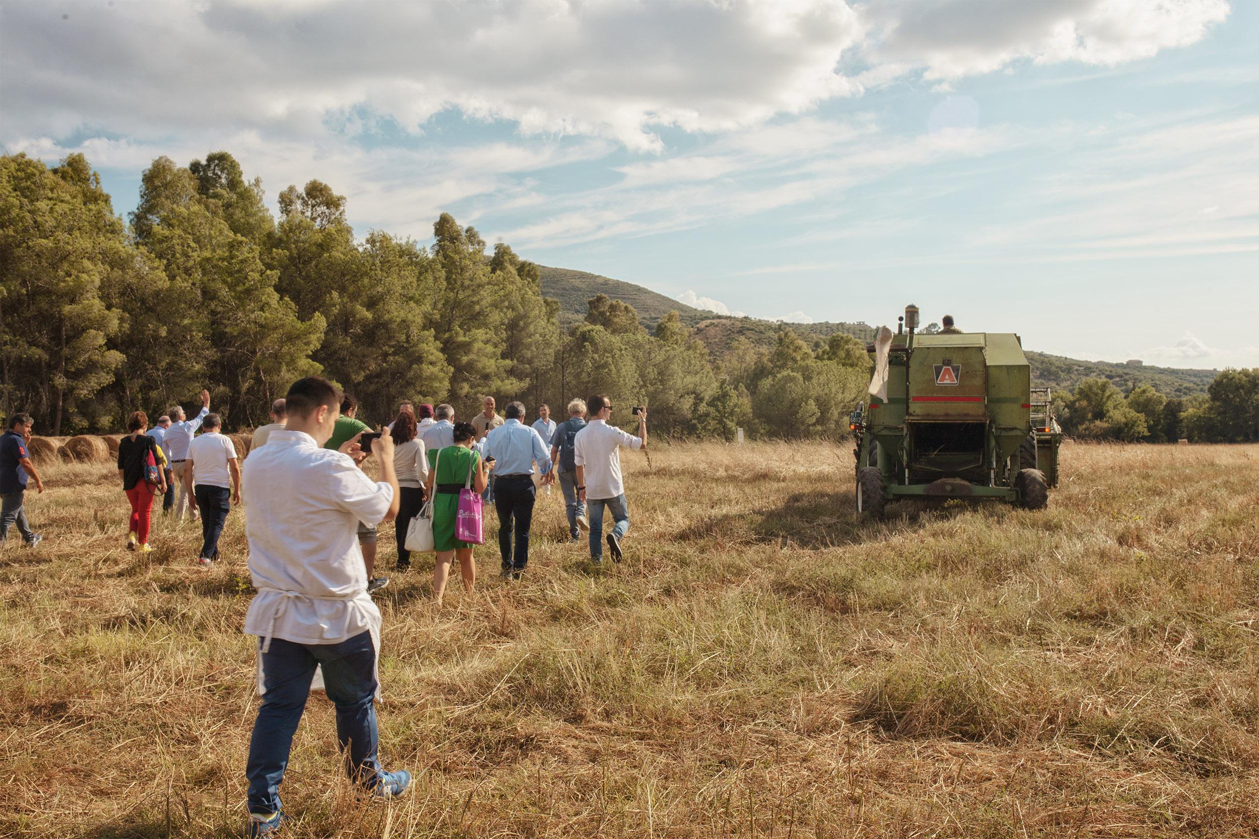Agrocepi, le richieste a Governo e Regione Campania per il comparto agricolo