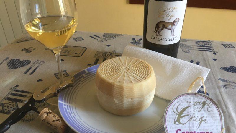 Degustazione guidata del Formaggio Capotempo di Capua e Pallagrello Bianco Vigne Chigi