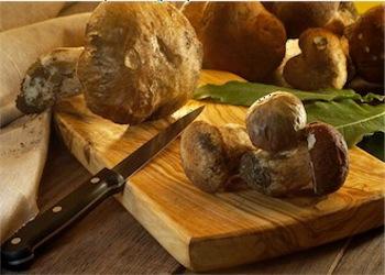 Col Greenpass la festa del Fungo Porcino in sicurezza a Montoro