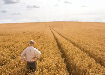 L' agricoltura campana ha il suo assessore regionale