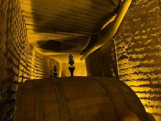 Un litro di vino su 4 è prodotto nel Mezzogiorno
