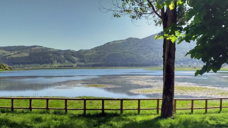 Irpinia Verde: Il Lago Laceno riparte con le cooperative