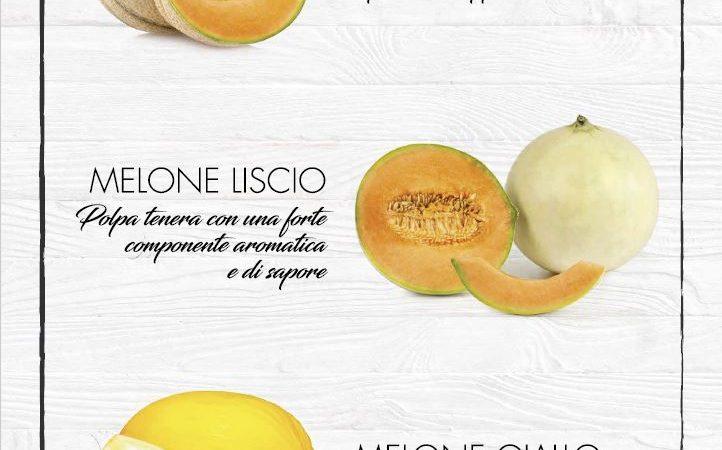 In corso la campagna per il Melone italiano, ecco i tipici della Campania