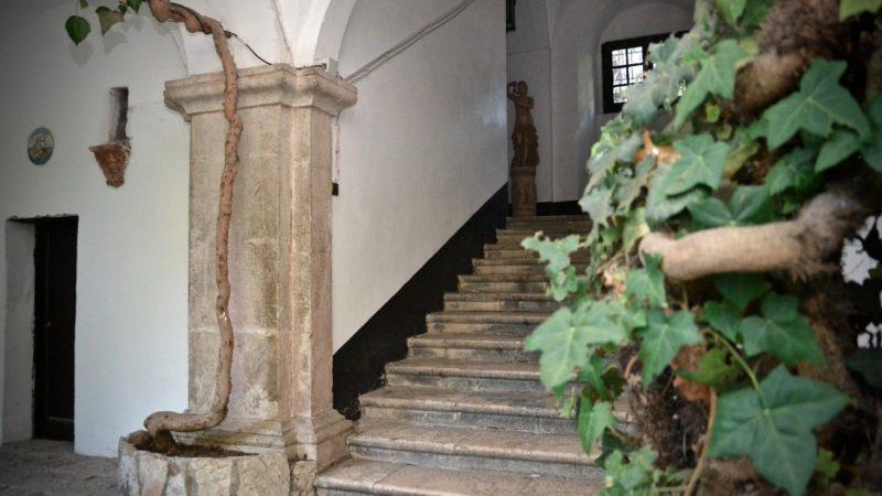Dal Progetto Agrinuovo la De Sanctis Avellino Wine Box