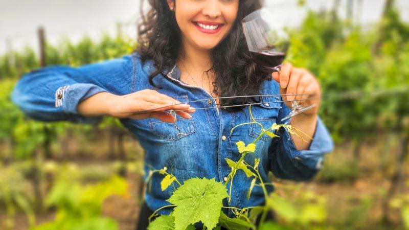 Movimento Turismo del Vino, la Campania nel direttivo con la Presidente Sorrentino