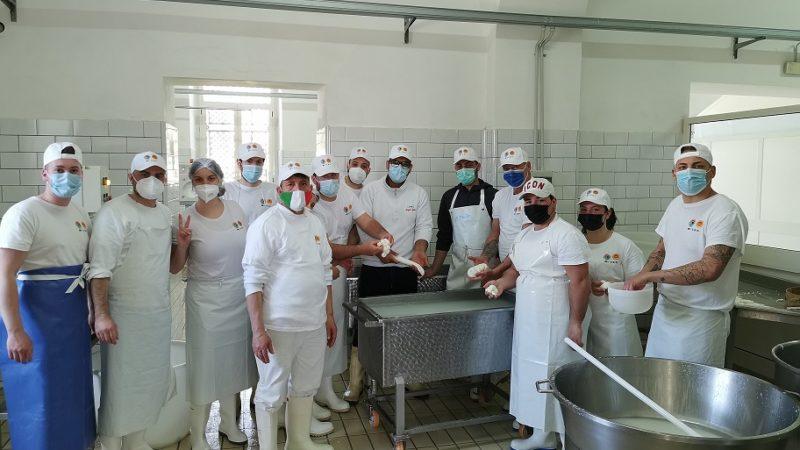 Mozzarella dop, al via il nuovo corso per Casari